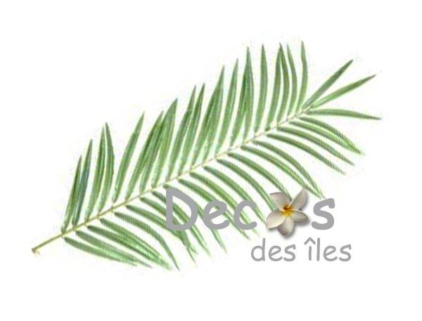 Feuille de palmier dc 0451 - Set de table feuille de palmier ...